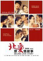 《北京爱情故事(2014年电影)》