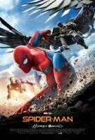 《蜘蛛侠:英雄归来》